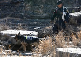 保安人员的心理素质的训练要把握焦点