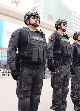 泰安保安服务公司